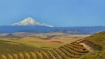 Wine vineyard and Mt. Hood by Al Hayward