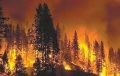 Oregon Fire Season