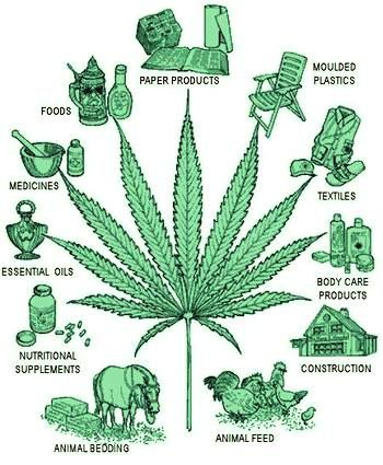 Hemp for all uses