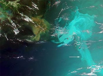 NASA image of gulf oil spill