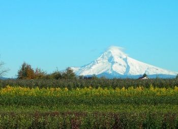 Mt. Hood viewed from the Gresham area.