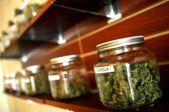 Marijuana on shelf