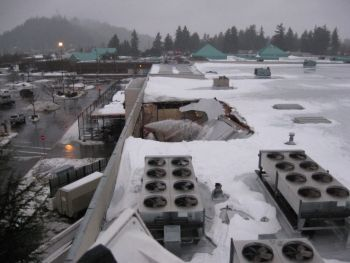 Gateway Fred Meyer Store S Roof Partially Collapses