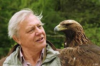 Sir David Attenborough.