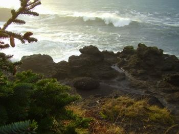 Rocky Creek State Park Wayside in Depoe Bay, Oregon