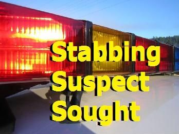 Stabbing suspect sought