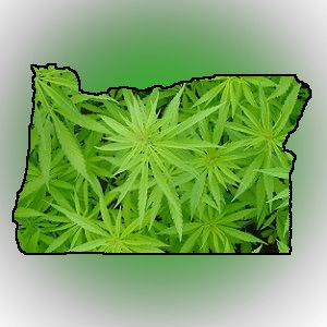 Oregon marijuana state