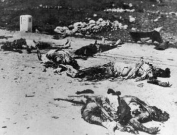 Many from Deir Yassin were murdered and brutalized