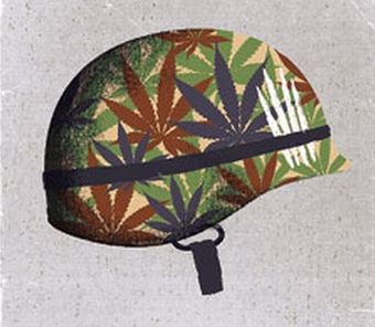 PTSD and pot and war