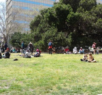 Occupy Oakland May Day