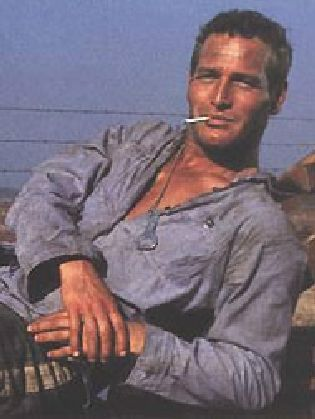 cool hand luke anti hero essay The movie cool hand luke you can order a custom essay on cool hand luke now posted by essay on john proctor as a tragic hero literary analysis essay on.