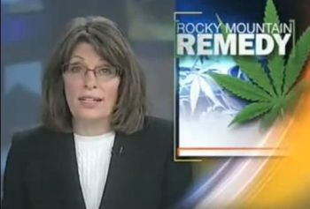 Montant newscast about medical marijuana