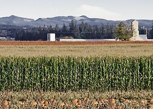 Farm in Oregon